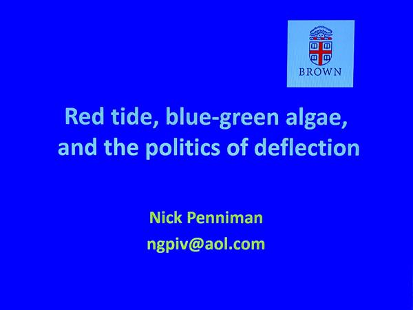 algae 24